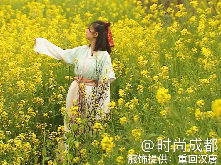 成都之春:黄萼裳裳绿叶稠 千村欣卜榨新油