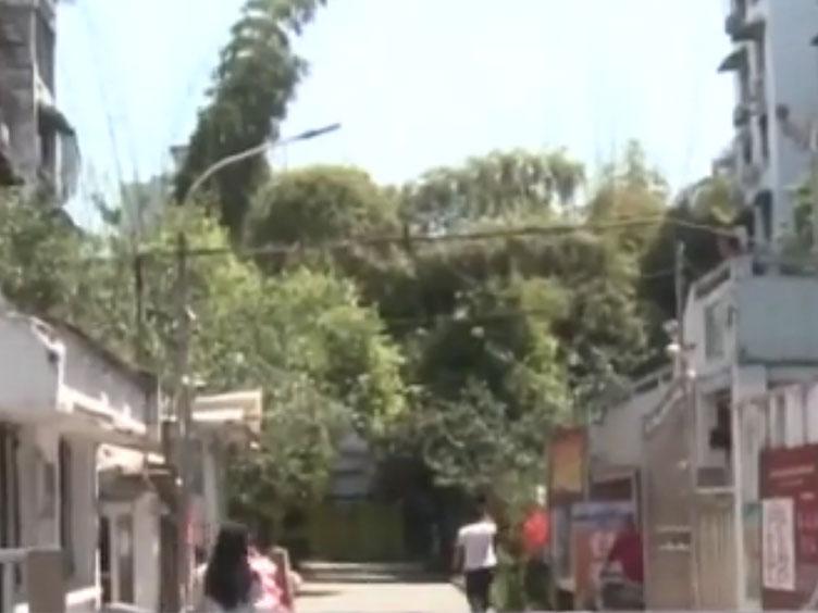 女子回家路上被三男子滋扰殴打 警方介入调查