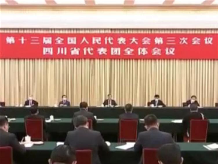 四川代表团举行全体会议集中审议政府工作报告