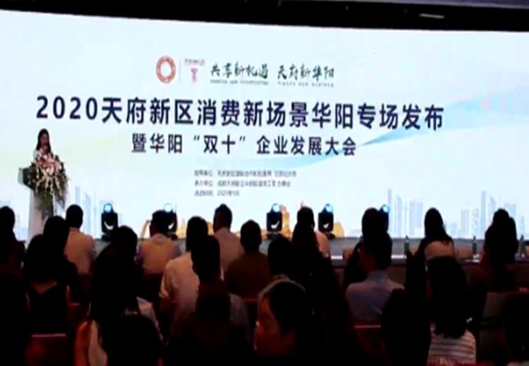 主导产业!公服设施!华阳全球首发83个项目清单