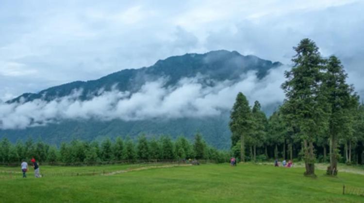 点赞!邛崃市南宝山镇被评为第四批省级森林小镇