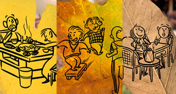 落叶季丨以叶为眼 看成都初冬生活图鉴