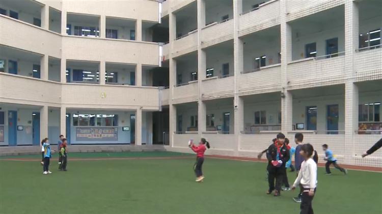 约会青春丨走进棠外小学 领略小棒球手们的风采