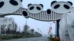 蜀龍路、熊貓大道改造工程進入收尾階段