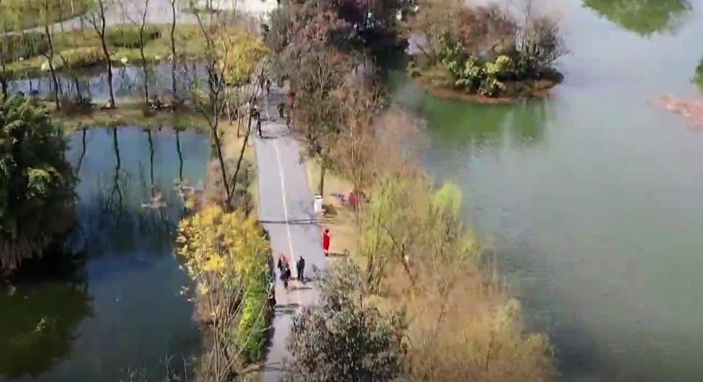 聊园林谈绿化 共建美好<font color=red>公园城市</font>
