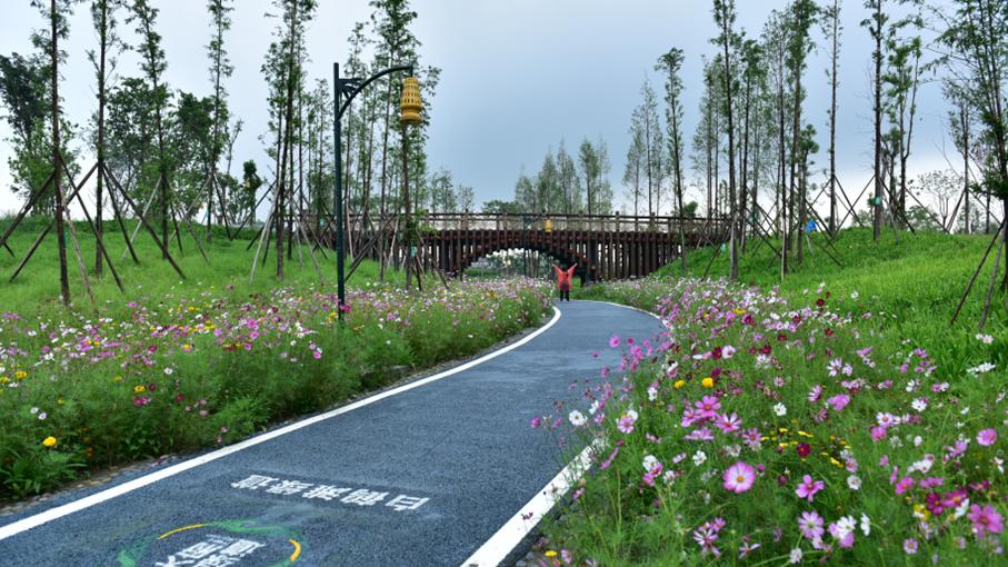 四川省建筑设计研究院有限公司高静:营造高品质公共空间 促进高质量公园城市建设